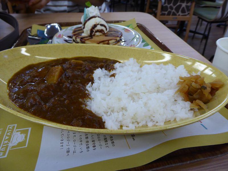 上野動物園 お昼