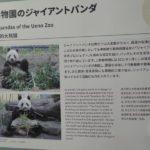 何十年ぶりかに上野動物園へ行ってきました